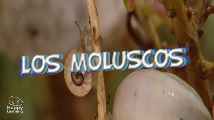 Los Moluscos