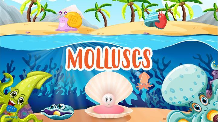 The Molluscs