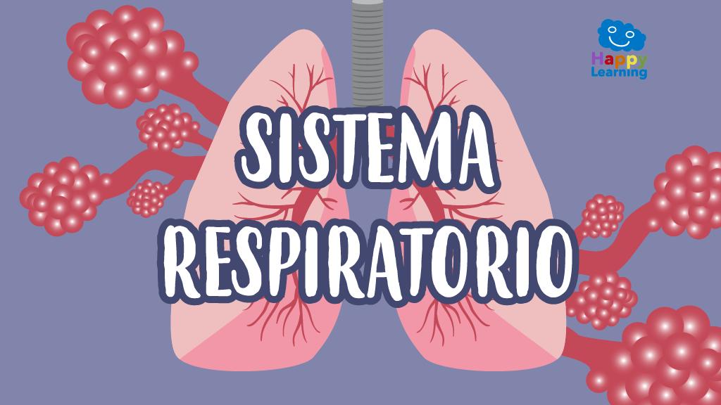 Sopa de Letras: El Sistema Respiratorio