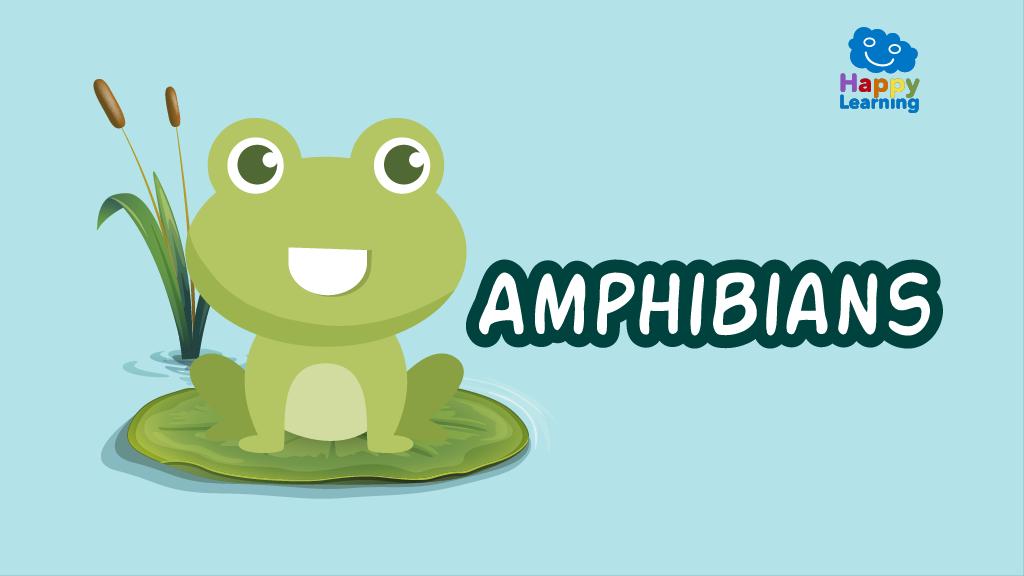 Quiz: Amphibians