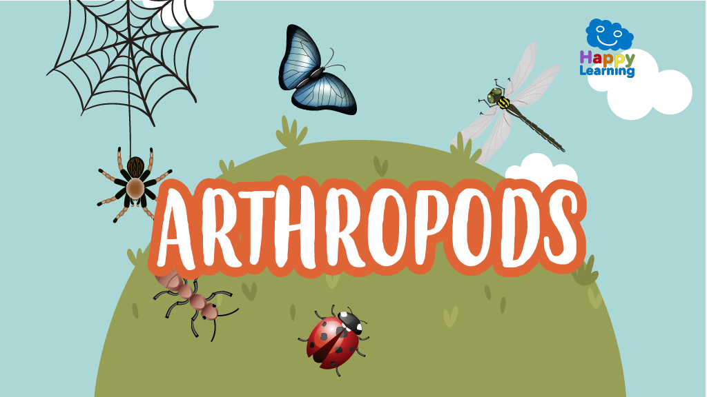 Word Search: The Arthropods