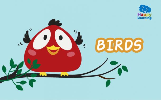 Quiz: The Birds