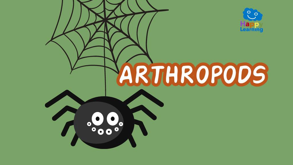 Quiz: The Arthropods