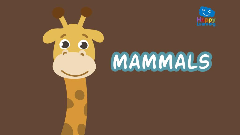 Quiz: The Mammals