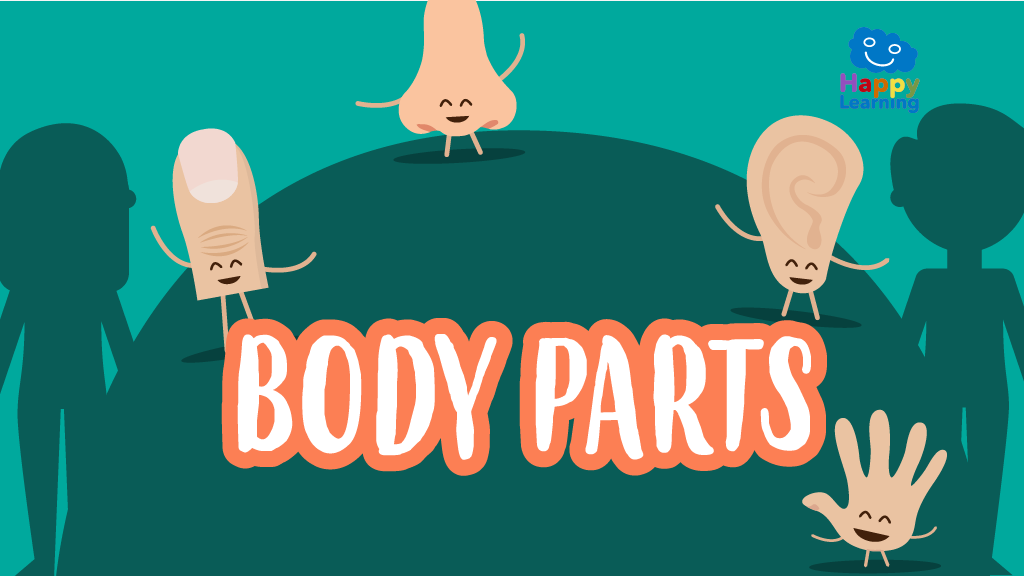 Word Search: The Body Parts