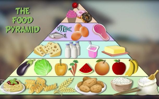 Healthy Eating: The New Food Pyramid