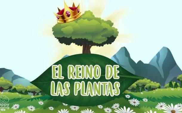 El reino de las plantas