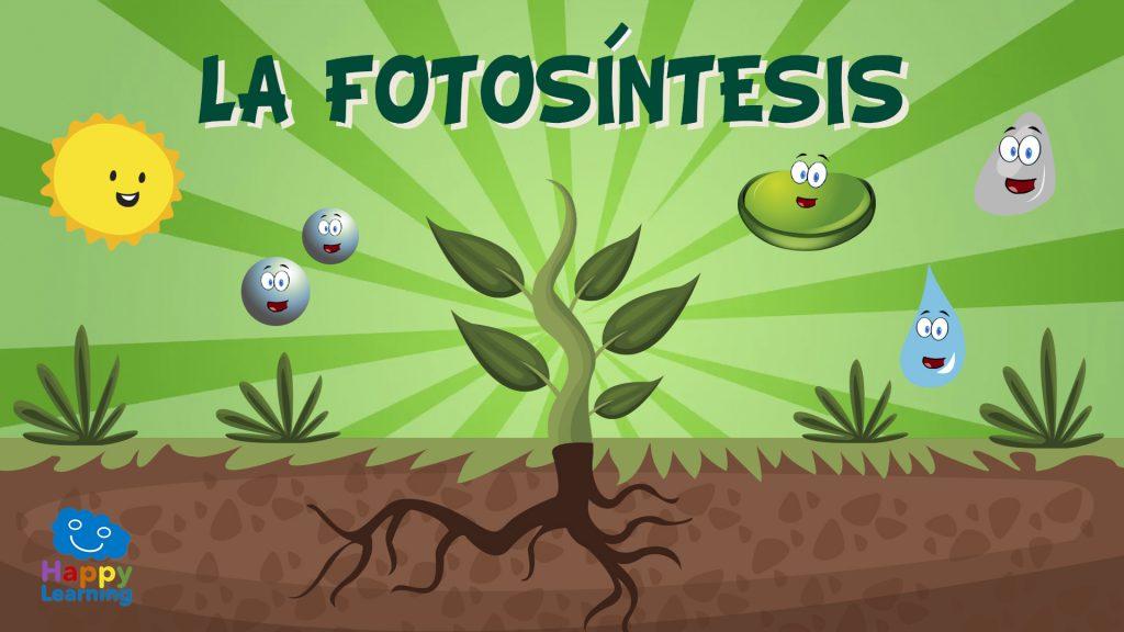 La Fotosíntesis. ¿Cómo se alimentan las plantas?