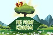 The Plant Kingdom: Characteristics and Classification