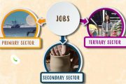 Jobs and their classification: Primary, Secondary & Tertiary sector