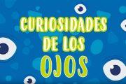5 Cosas que no sabías de los ojos | Curiosidades fascinantes para niños