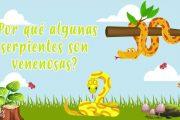 ¿POR QUÉ ALGUNAS SERPIENTES SON VENENOSAS? | CURIOSIDADES FASCINANTES PARA NIÑOS