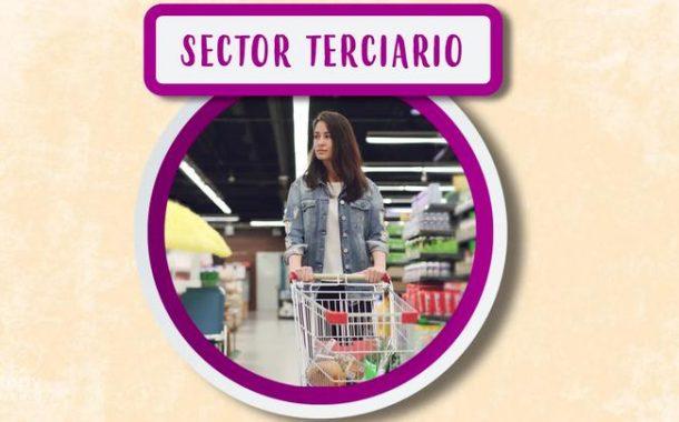 EL SECTOR TERCIARIO. El trabajo y su clasificación.