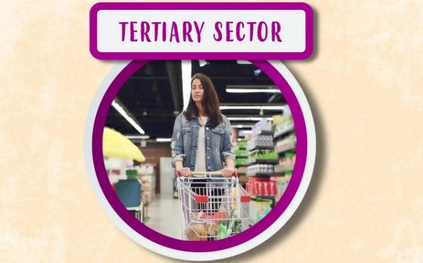 What is the tertiary sector? Jobs and their classification.