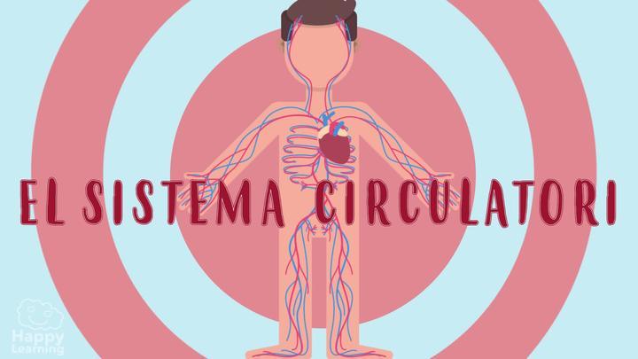 El sistema circulatori i la sang