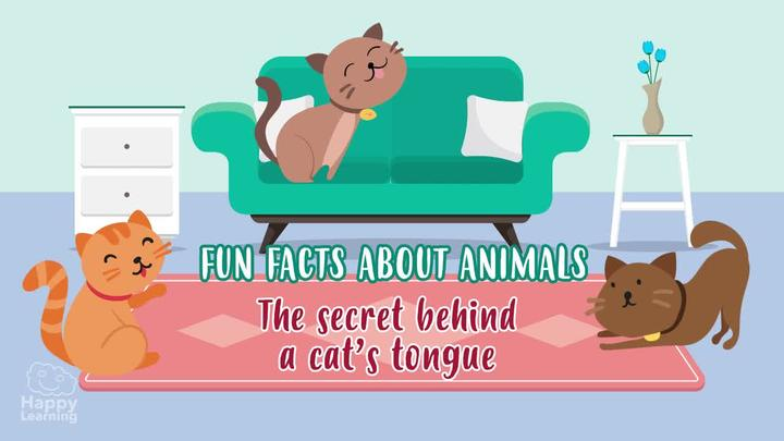 Animal Fun Facts : The secret behind a cat's tongue
