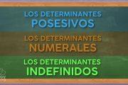 Los determinantes posesivos, numerales e indefinidos.