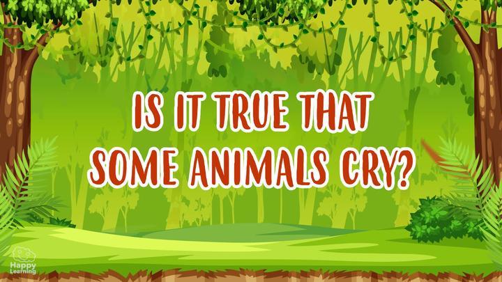 DO ANIMALS CRY?